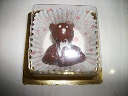 Coklat Bear with Case