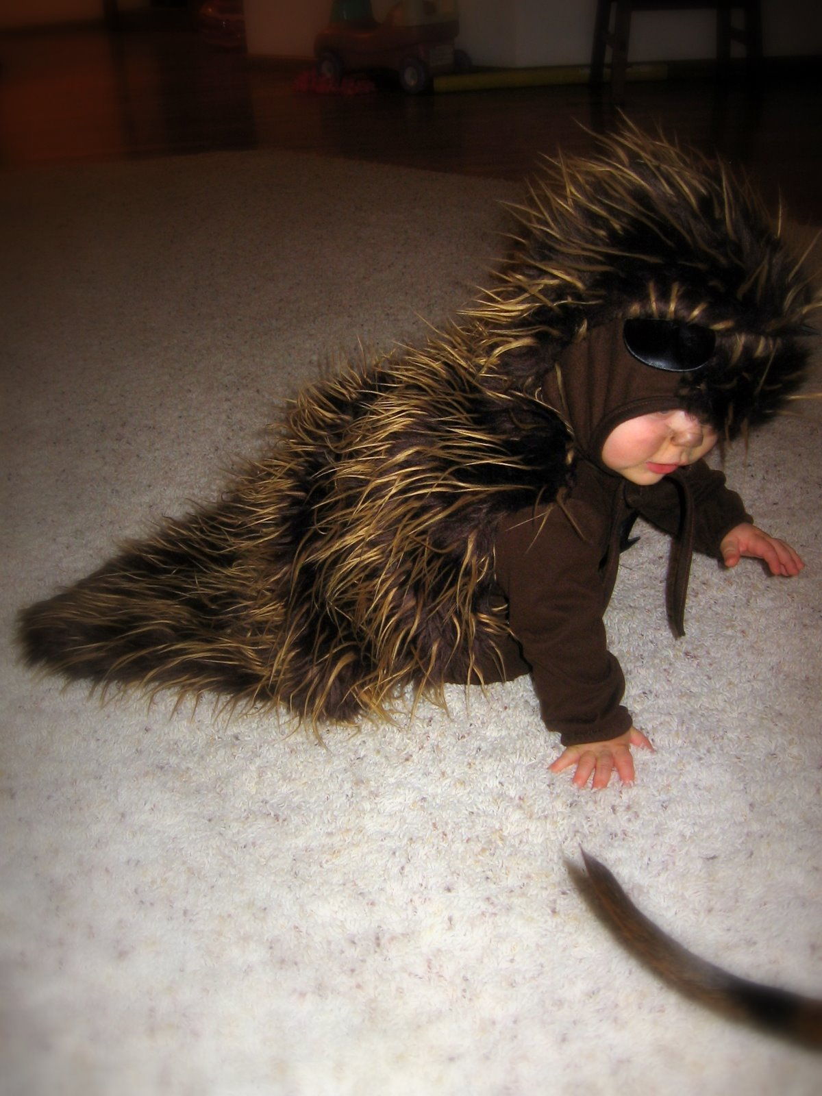 Porcupine Halloween CostumeAwesome Halloween Costume This Is Hilarious : baby porcupine costume  - Germanpascual.Com