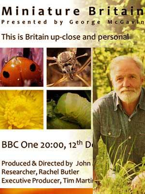 Britanya Mikroskop Altında