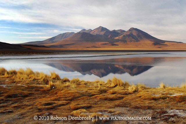 laguna canapa em lipez bolivia