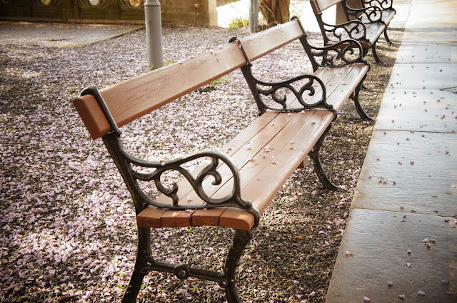 picture of wooden and metal park bench