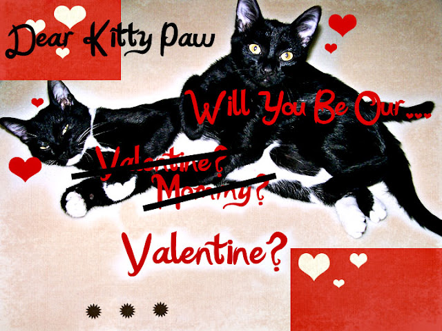 Love Letter to Kitty Paw