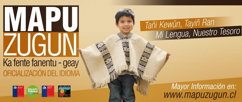 Oficialización del mapuzugun