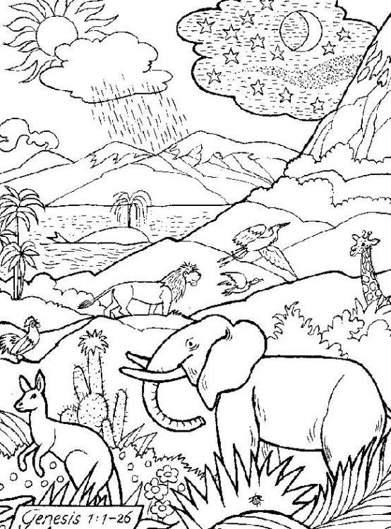 La creacion dibujos para colorear - Imagui