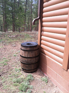 The finished rain barrels in place