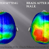 Great Graphic:  Your Brain Before and After 20-Minute Walk