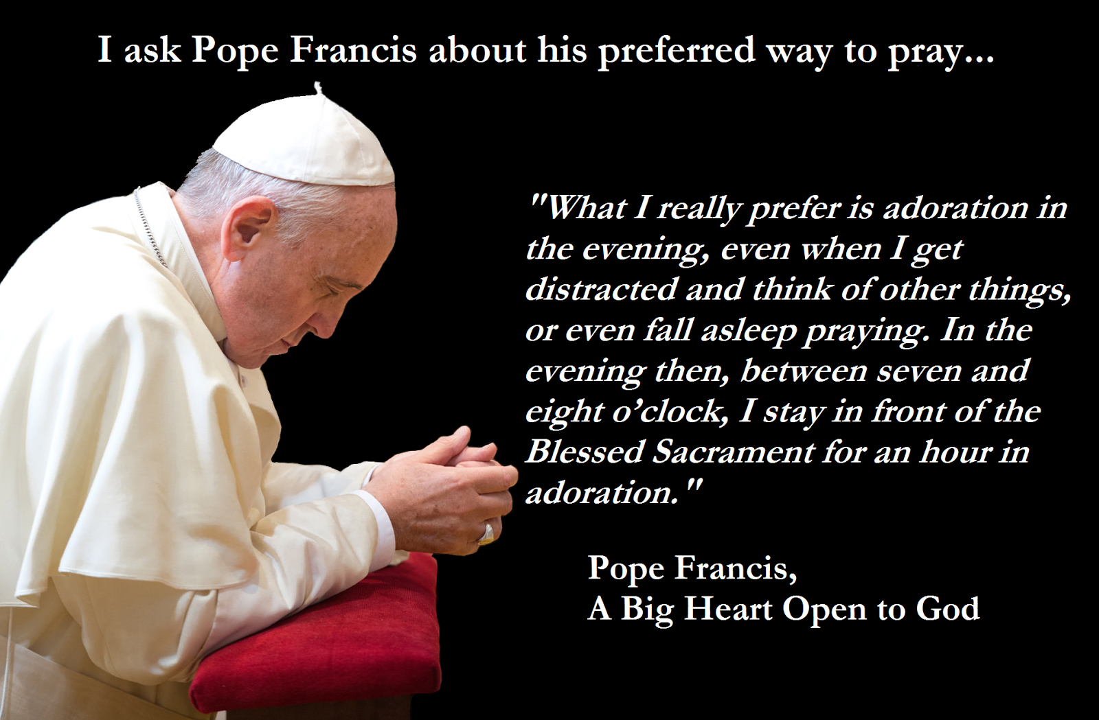Pope francis quotes