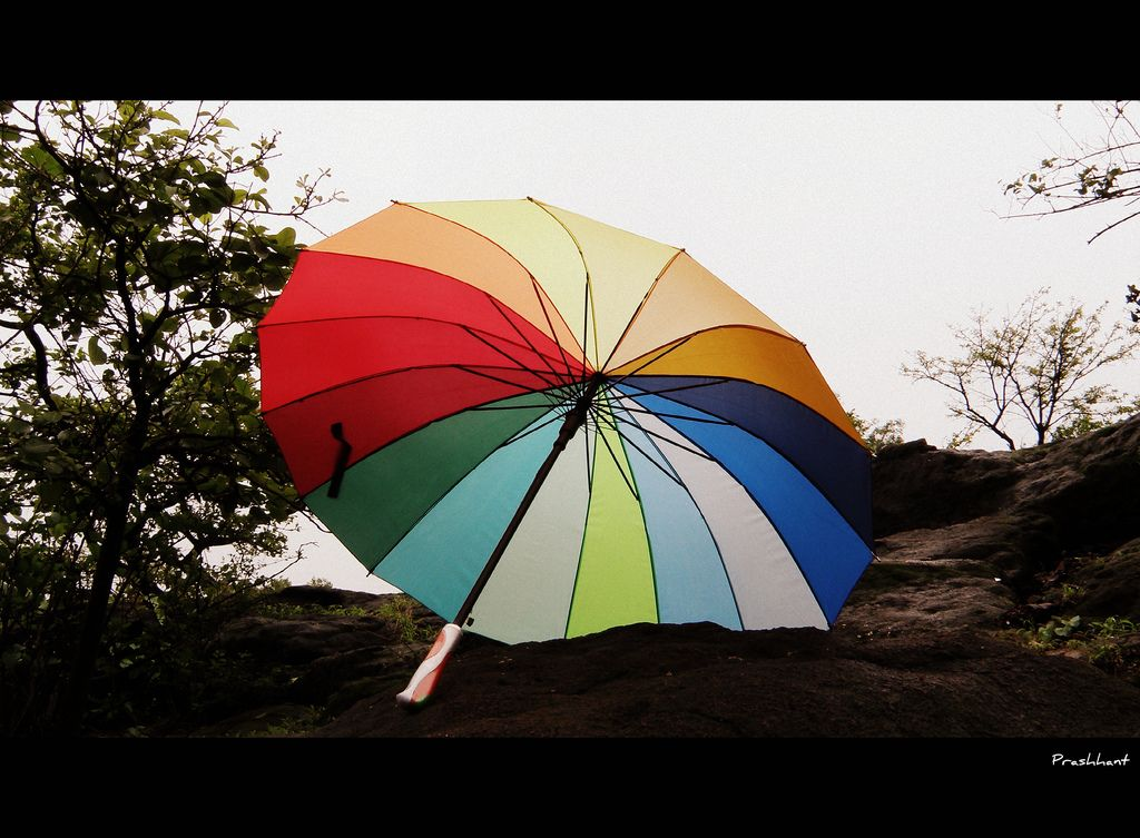 6. Colors of Life