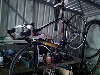 put a Reid Falco Elite in your shed