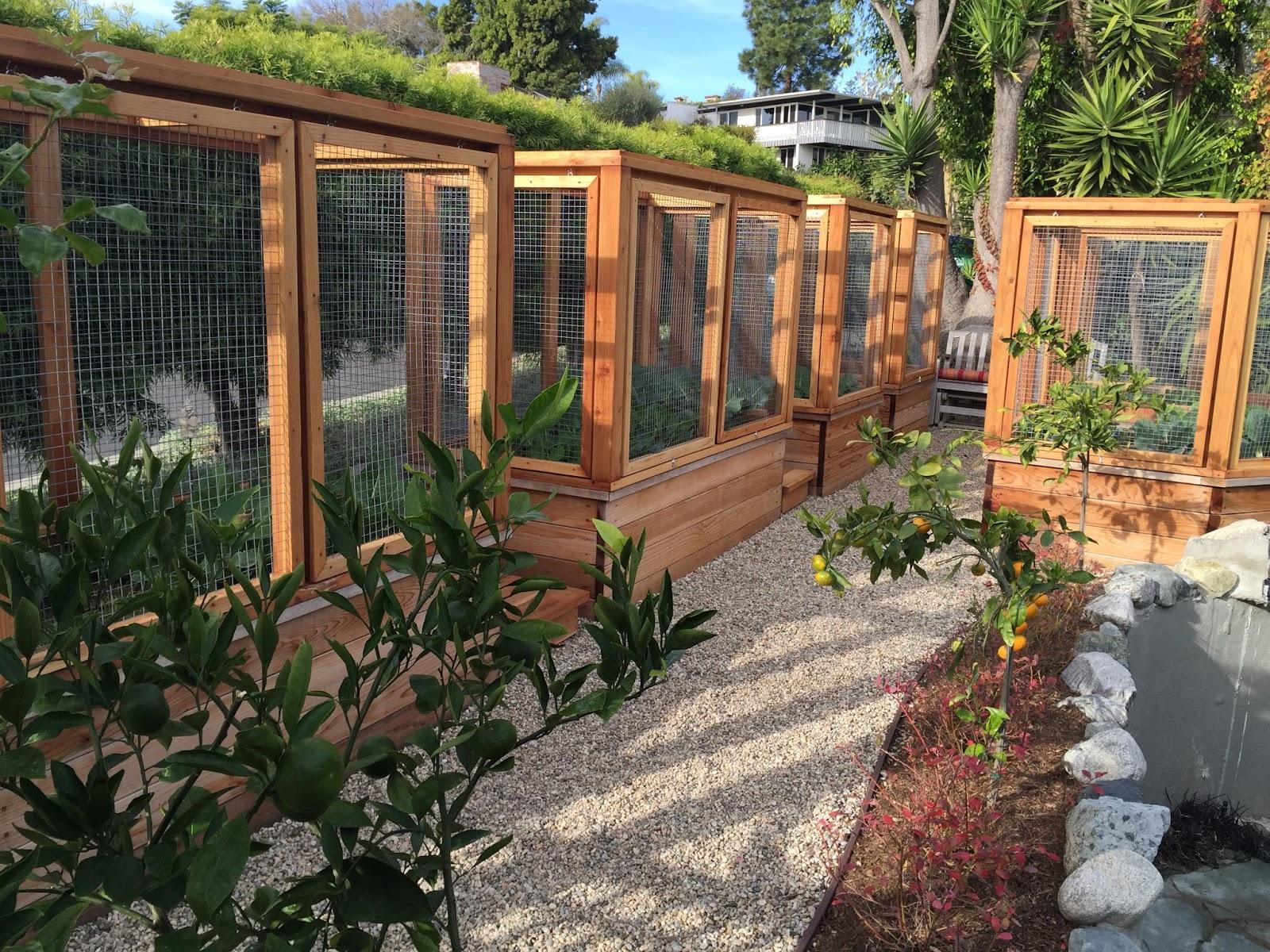 The Winter Garden, The Rain Barrel and Disneyland Dirt | Fresh From ...