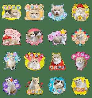 line-sticker5891