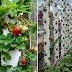 كيفية الزراعة داخل المواسير البلاستيك