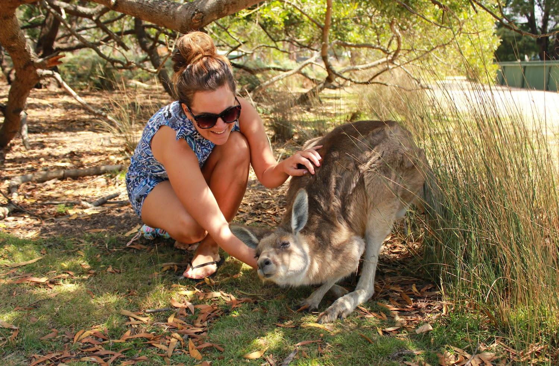 Taaanti grattini sul collo al cangurotto! - foto di Elisa Chisana Hoshi