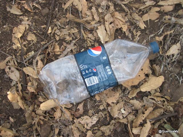 Pepsi Cola tirado en el cerro