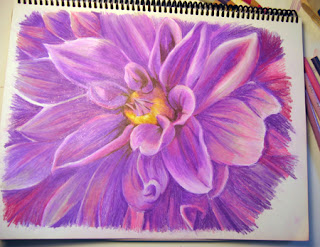 5th photo of Work in Progress - Color Pencil Drawing of a Dahlia Flower