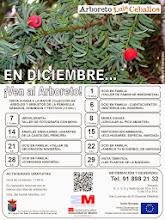 Arboreto Luis de Ceballos