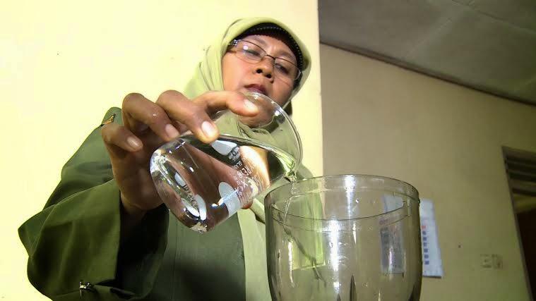 Mangga Garifta Mangga Unggulan Indonesia