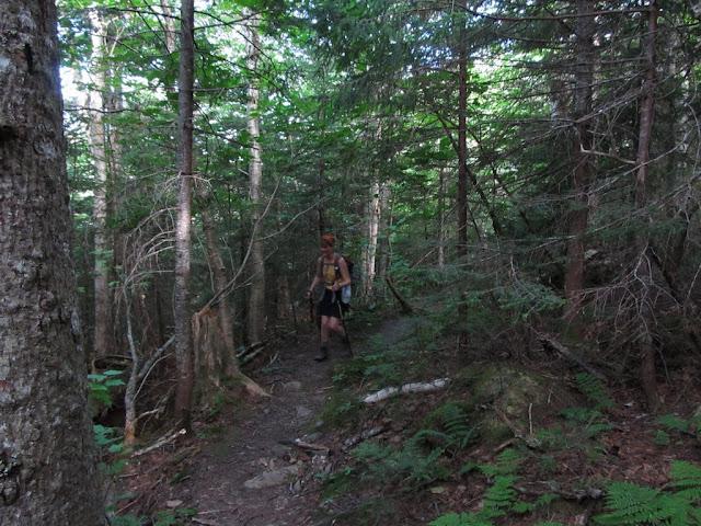 Ramblings Seeking An Alternate Peak Mt Adams Via King