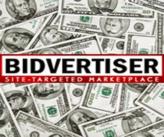 Make Money Online With Bidvertiser In Urdu & Hindi