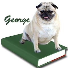 Meet George