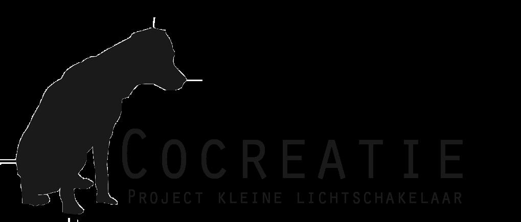 Cocreatie // Project kleine lichtschakelaar