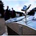 Proses Pembuatan Lambang Rolls-Royce