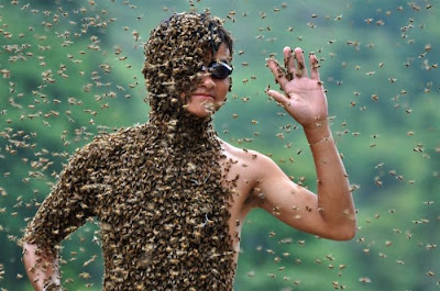 Bee-Bearding Contest in China Seen On www.coolpicturegallery.us