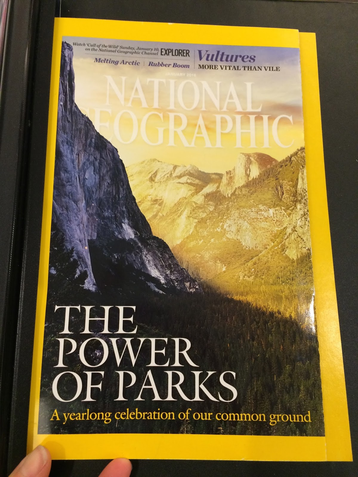 2016 marks the 100th anniversary of our national park service and i am delighted to see our parks getting some press writer and environmentalist wallace