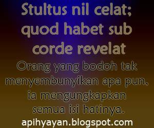 kata kata bijak peribahasa latin dan artinya apihyayan blog