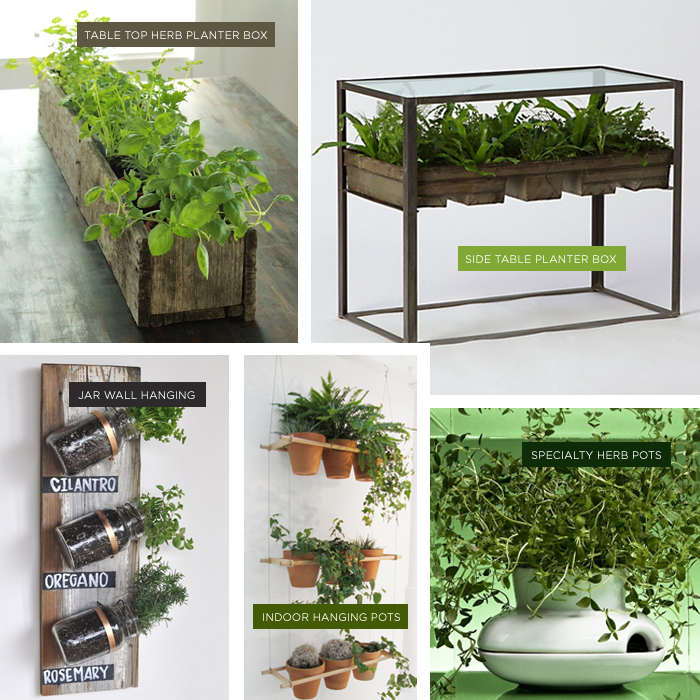 Indoor Herb Garden Ideas Part - 30: DIY Indoor Herb Gardens