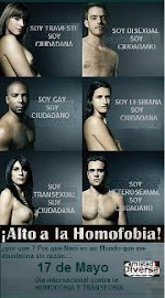 alto a la homofobia