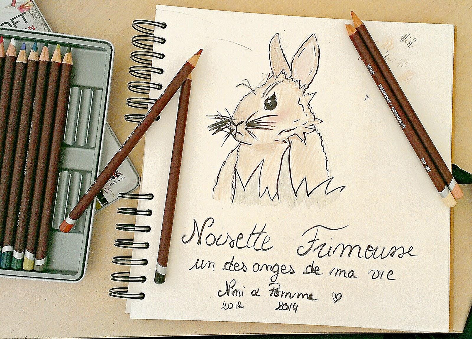 Dessin croquis lapin bunny lapine