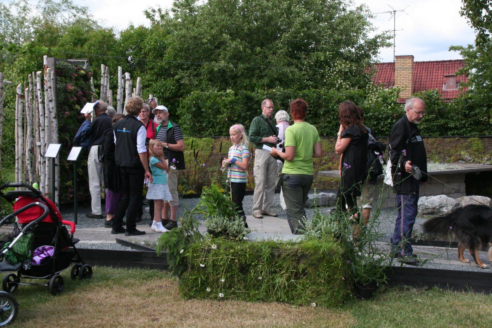 Tematrädgårdar 2011: juni 2011