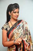 Syamala glamorous photos in saree-thumbnail-6