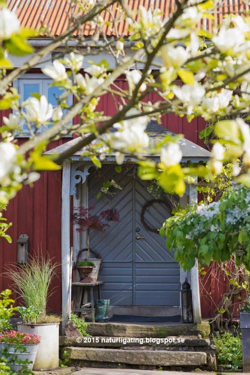 Öppen Trädgård 30-31 Maj 10-16