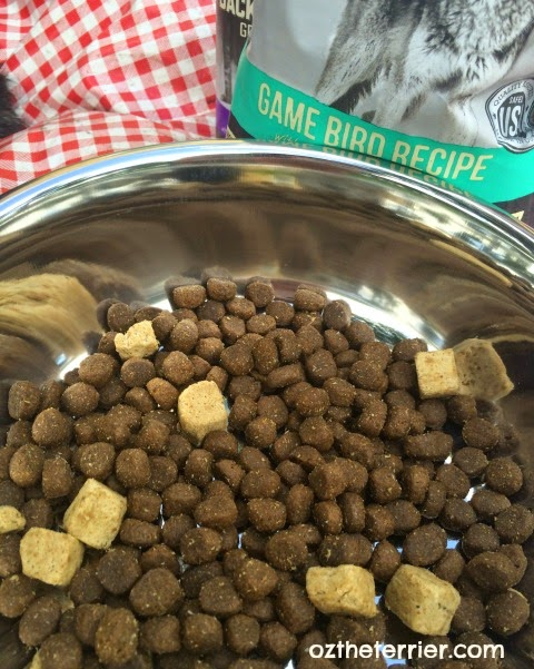 Merrick Pet Care Backcountry Raw Infused ancestral diet for dogs