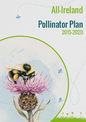 Cover of all-Ireland Pollinator Plan