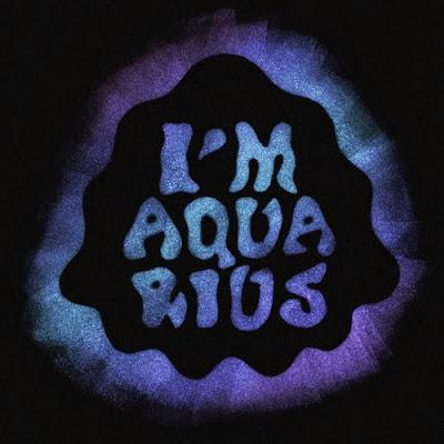 Metronomy - I'm Aquarius (Edwin Van Cleef Remix)