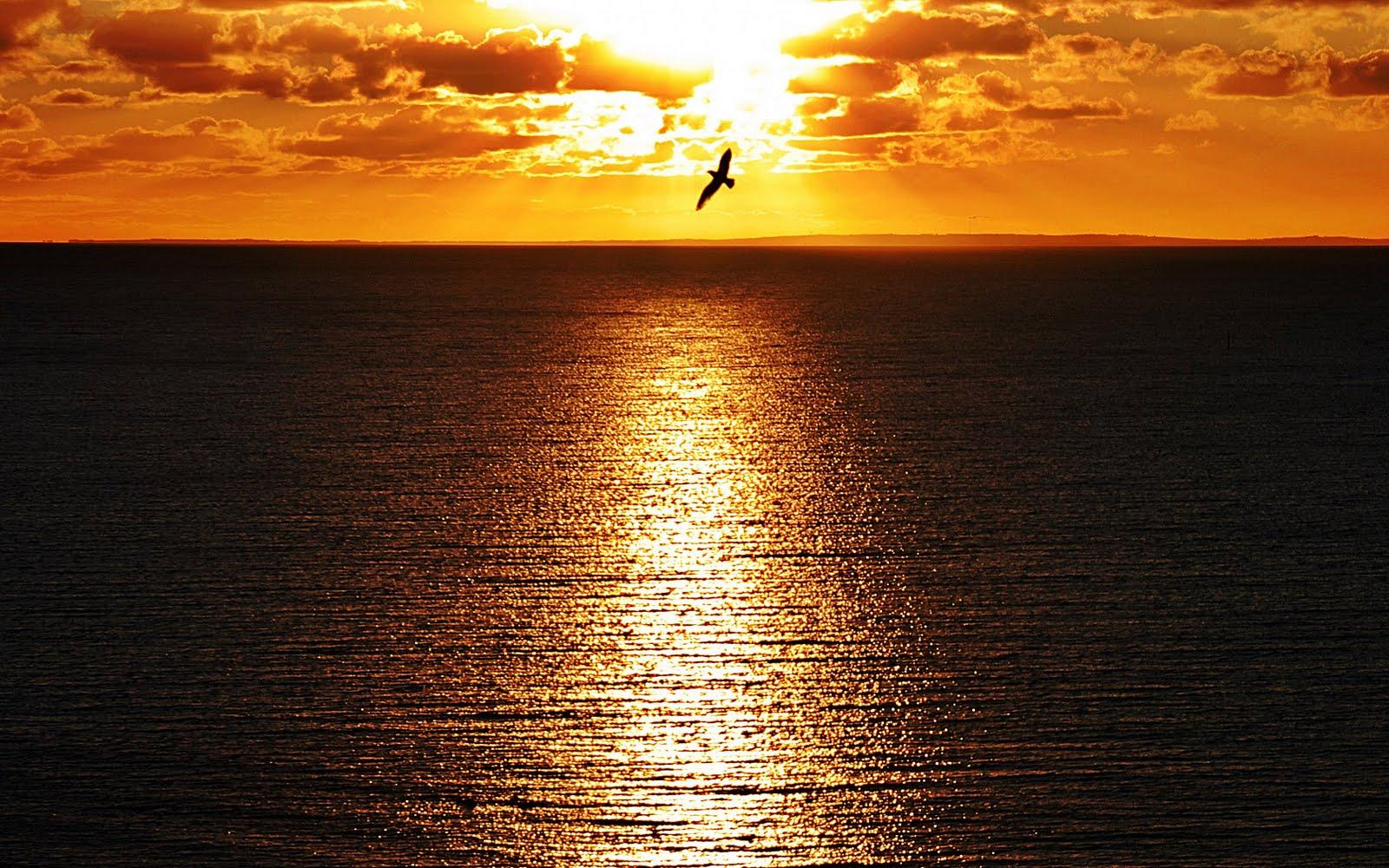 http://2.bp.blogspot.com/-tpnGRt7yd-I/Tk4yb_hZPpI/AAAAAAAAAMg/gBhMOG-rV1c/s1600/sunset_wallpaper_15.jpg