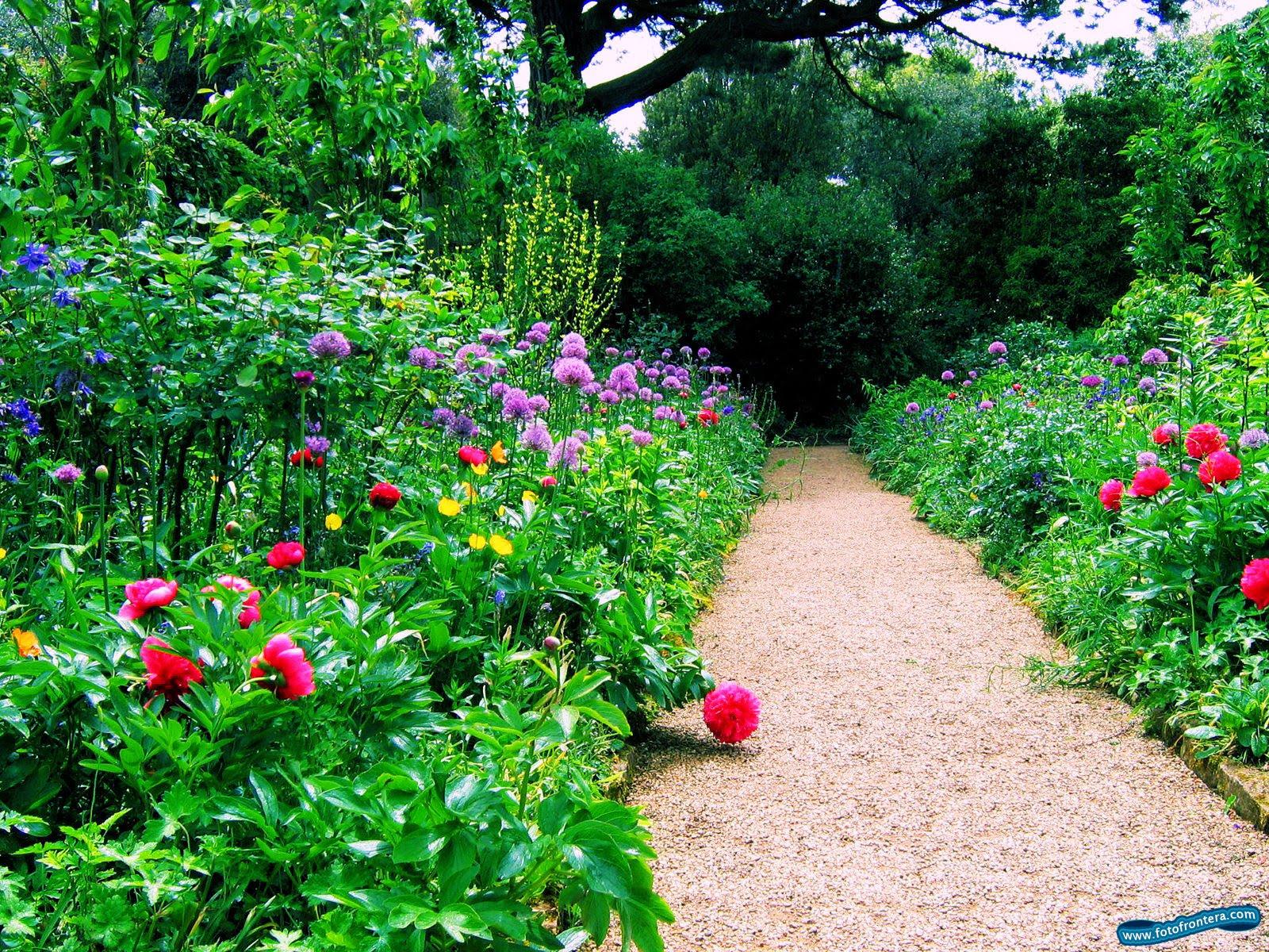 jardineria decoracion exteriores