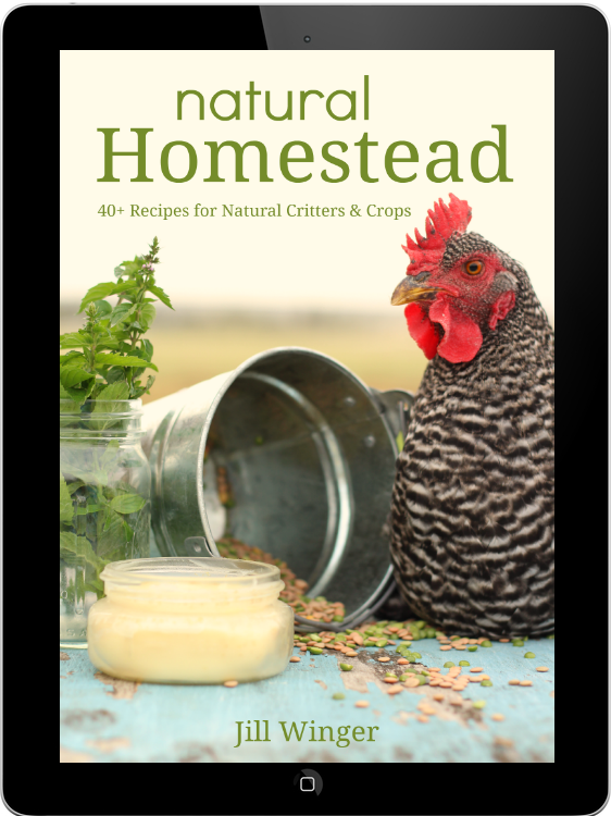 New Book from The Prairie Homestead!