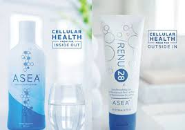 ASEA Partner