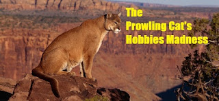 http://thecatshobbies.blogspot.com/