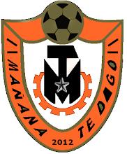 Escudo MTD - Apertura 2012