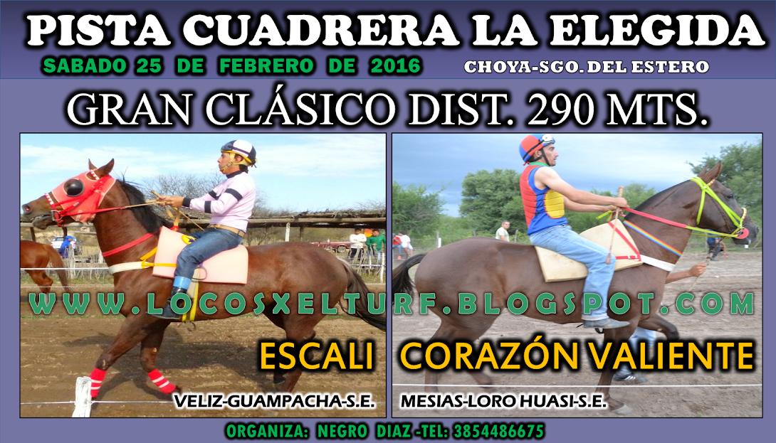 25-02-17-HIP. LA ELEGDA-CLAS.