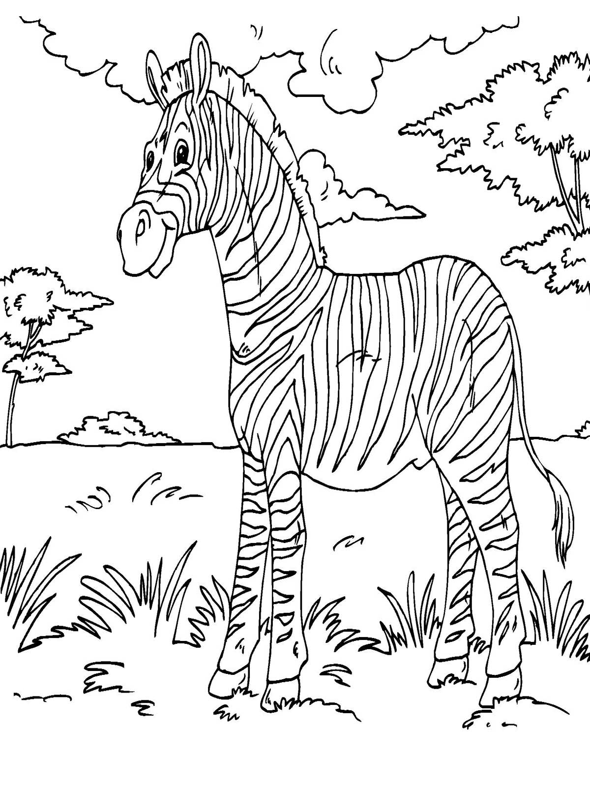 zebra coloring pages without stripes - photo #35