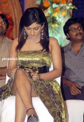 sheela telugu actress sexy navel and cleavage