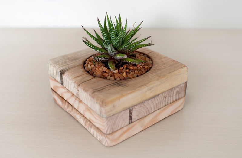 Peque os maceteros de interior con palets for Maceteros de madera para interior