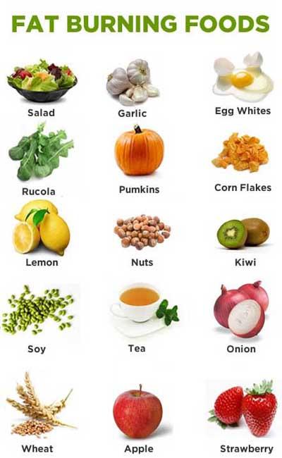 Protein Food List | www.pixshark.com - Images Galleries