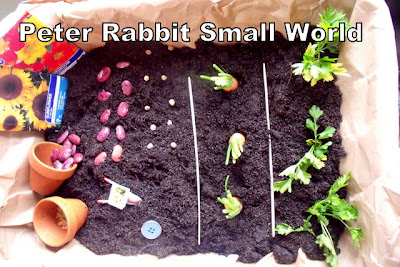 Peter Rabbit Small World Play